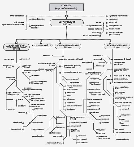 Схема образования языков.